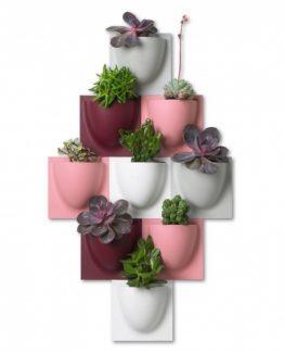 Vertiplants potte, liten, rosa, hvit, grå, bordeauxviolet