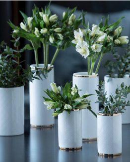 Cape vase, Halvor Bakke