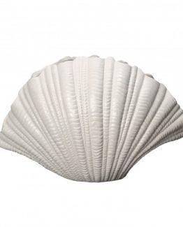 skjell vase byon design, shell vase