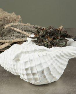 skjell shell vase skål byon alot decoration interiør